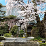 Japan, Mt. Fuji. Entuji Temple.