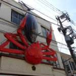 Japonia, Tokio, targ rybny