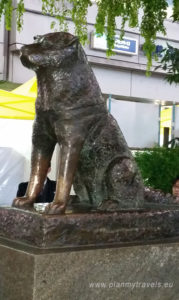 Japan, Tokyo, Shibuya Crossing, Hachiko dog