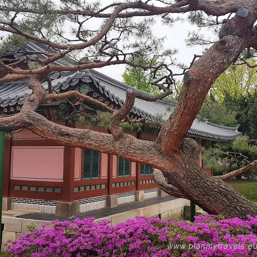 Korea Południowa -autorski plan podróży Seul pałac Gyeonbokgung
