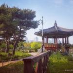 South Korea Daejeon Hanbat Arboretum