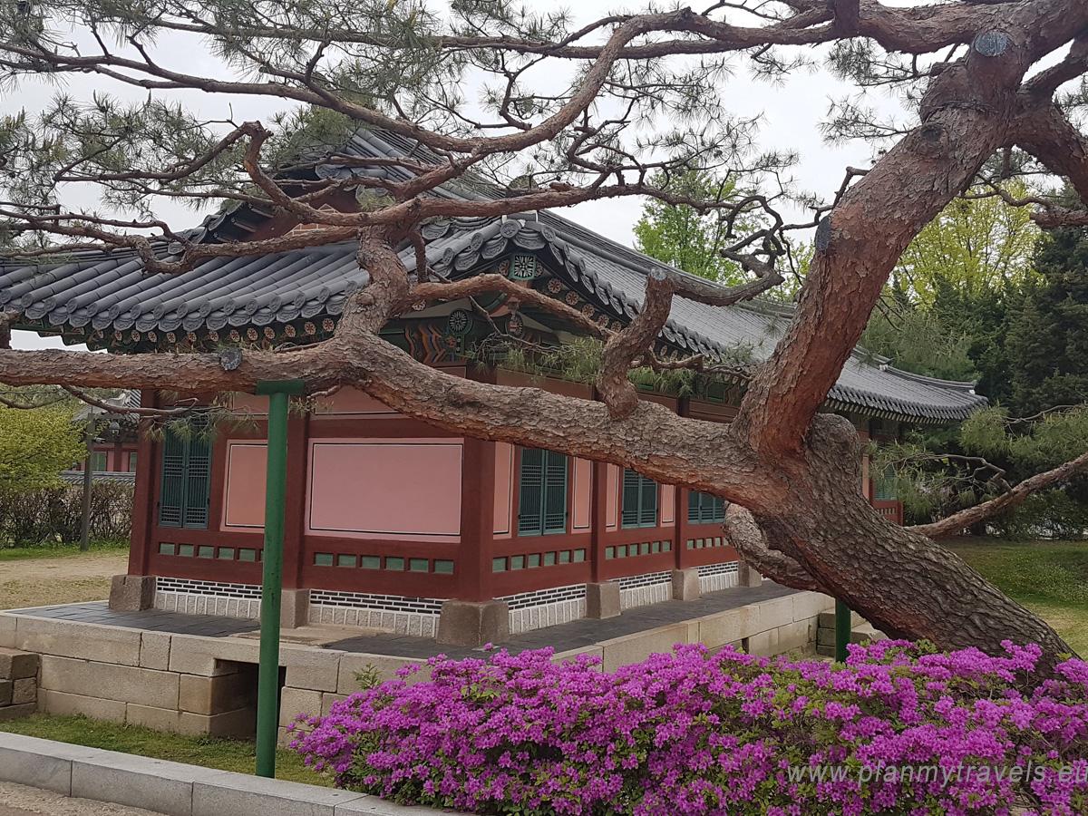 Gyeongbokgung Palace Seul najważniejsze atrakcje przewodnik, Seul, Korea Południowa, plan podróży, travel