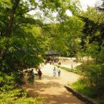 Seul pałac Changdeokugung Tajemniczy Ogród