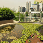 Korea Południowa, Seul, kładka Seoullo 7017, centrum miasta, dworzec kolejowy