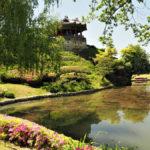 Korea Południowa, twierdza Suwon, Forteca Hwaseong, tejmniczy ogrórd