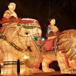 Lotus Lantern Festival South Korea, Seoul