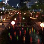 Lotus Lantern Festival South Korea