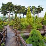 Korea Południowa, South Korea, Daejeon, Hanbat Arboretum