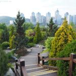 South Korea, Daejeon, Hanbat Arboretum