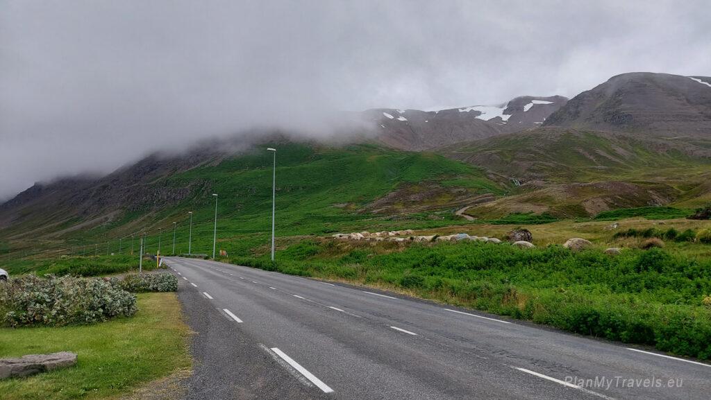 Islandia Północna, droga 82