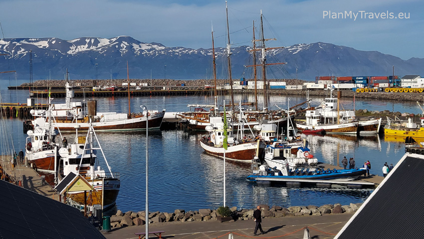 Húsavík Bay, North Iceland, Whale Watching