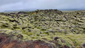 Skafta-Fires (Skaftáreldahraun) lava fields